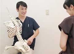 骨格標本を使用しての説明