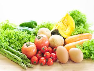 茨城妊活assist 栄養